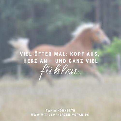 Kopf aus – Herz an – Tania Konnerth